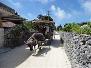 沖縄・八重山旅日記